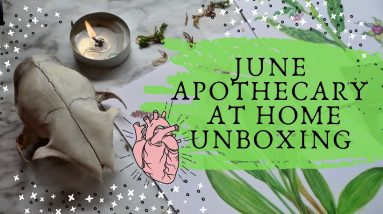 Apothecary at Home Unboxing || Herbs for Musculoskeletal Magic
