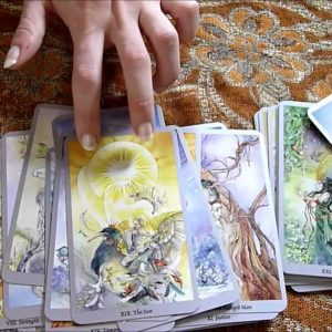 226. My Deck Collection