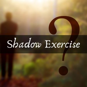 Shadow Exercise