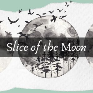 Slice of the moon