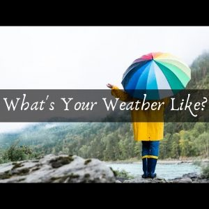 What's Your Weather Like?